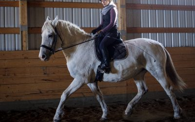 Q7: Do Clients Always Ride Horses in Equine Therapy?