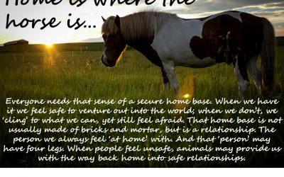 Home – Where the Horse