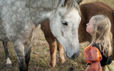 Horse Lessons: Animals and Psychoeducation