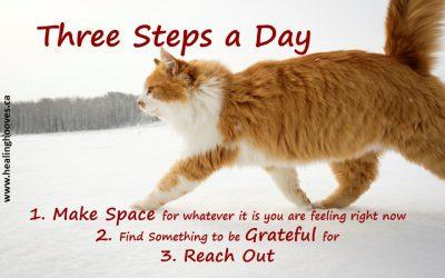 Three Steps a Day